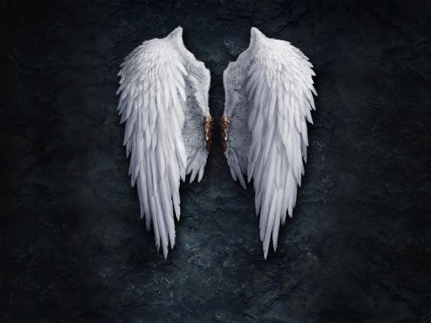 Осуждение крылья ангела мысли картинка
