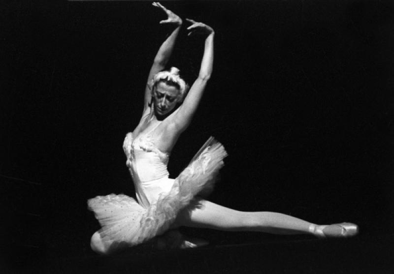 Майя Плисецкая. Искусство выражения человеческого тела мысли картинка