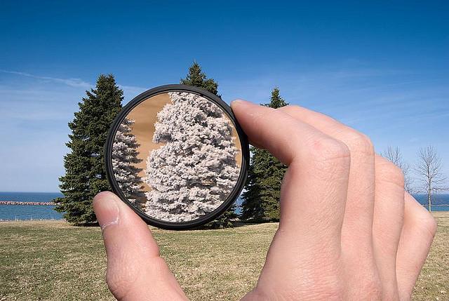 Восприятие реальности мысли картинка