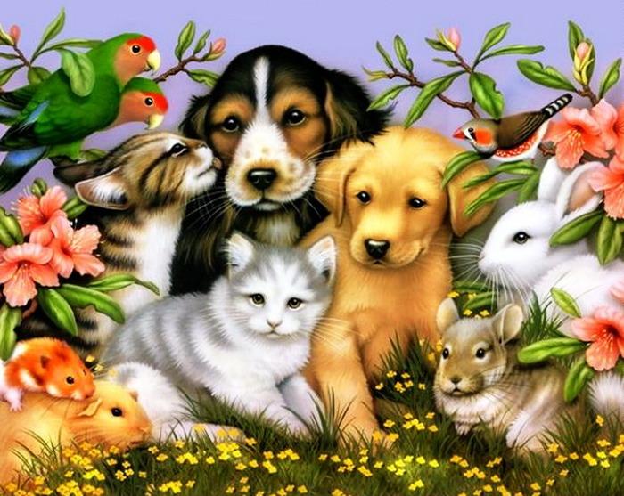 Любить животных мысли картинка