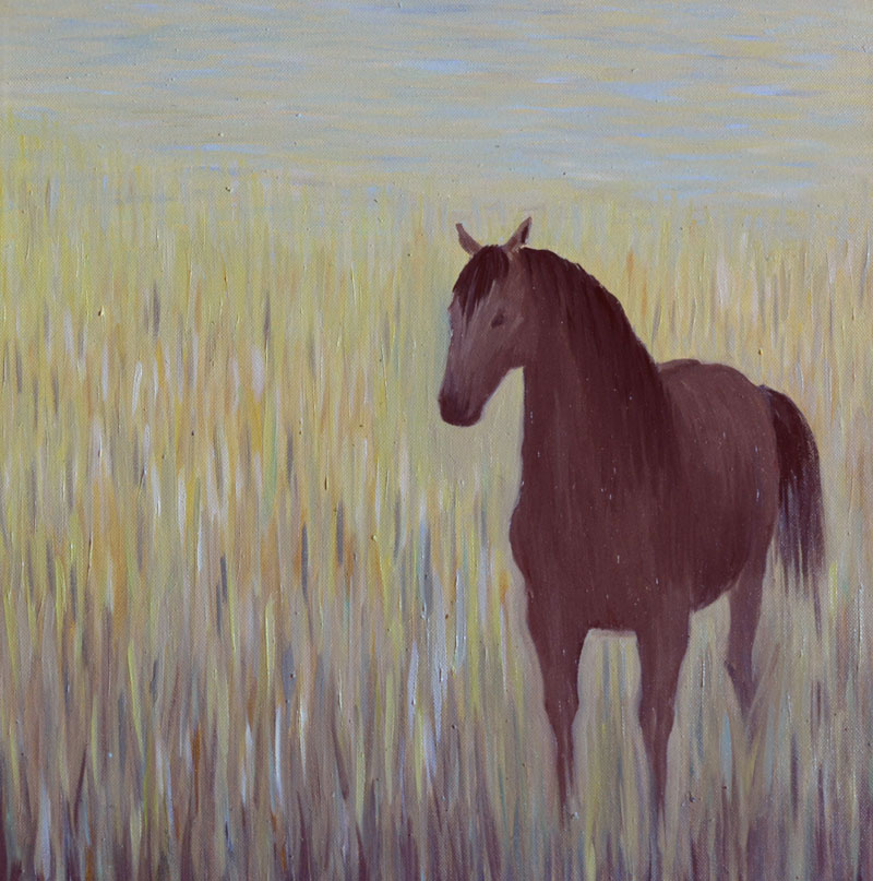 Лошадь в траве картина, холст, масло, 40х40 см - Художник Мария Текун maryatekun.ru
