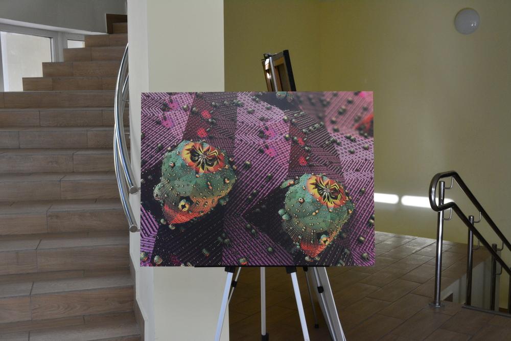 выставка фрактальных картин от сообщества Fractal Hub фото 1