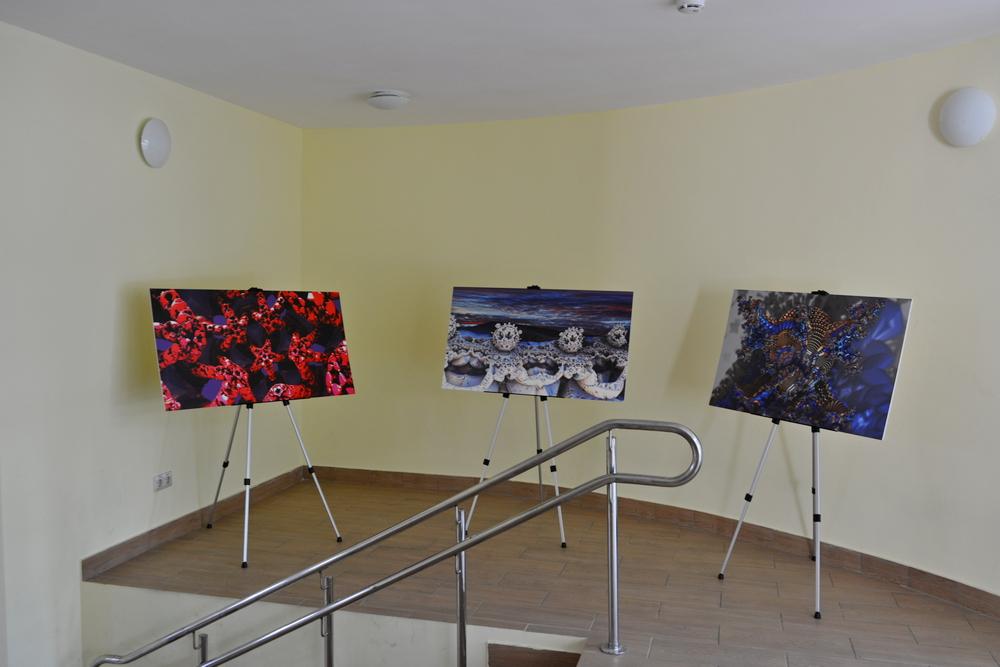 выставка фрактальных картин от сообщества Fractal Hub фото 3