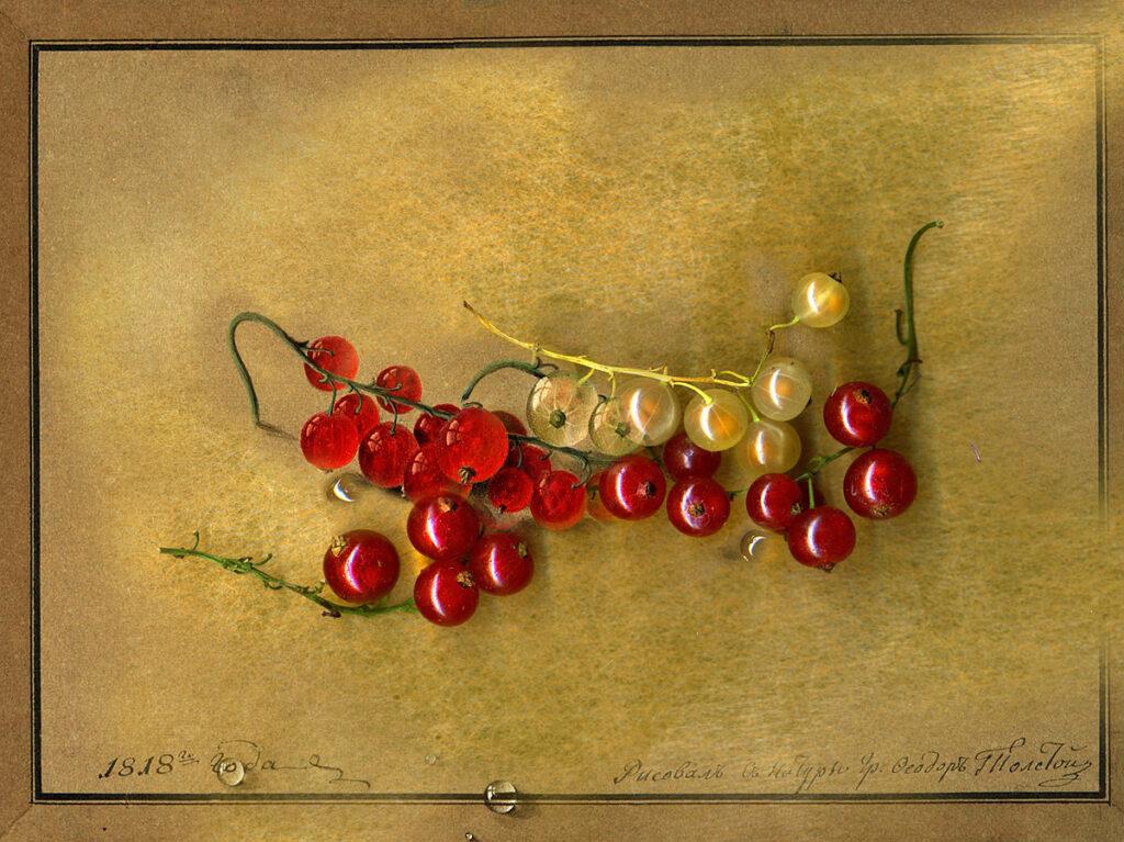 Художник Федор Толстой смородина натюрморты с цветами и ягодами
